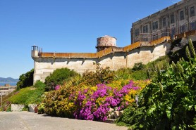 Gardens of Alcatraz, San Francisco, California